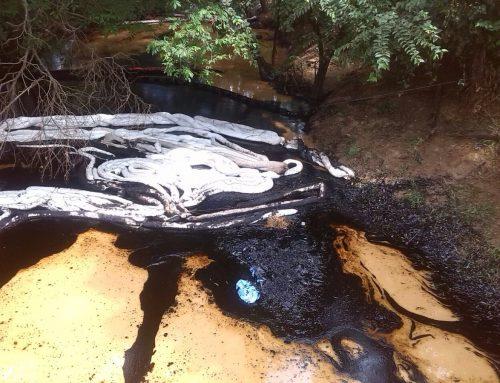 Carlos Michelangeli: Más de 130 fincas de productores agropecuarios afectadas por derrame de petróleo en Anzoátegui